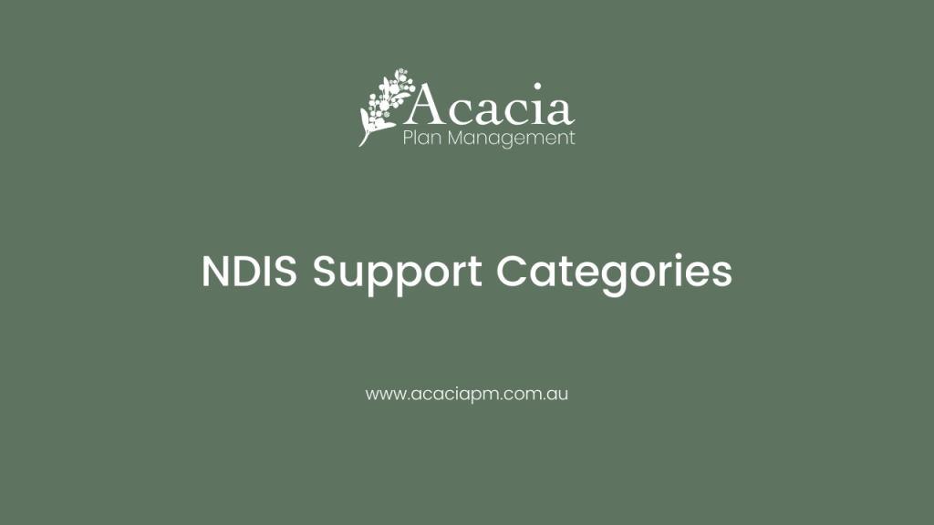 disability-services-plan-management-NDIS-services-support-categories